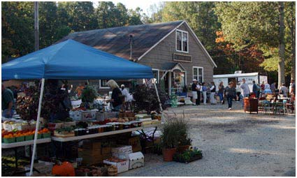 Fall Festival at Vintage Source