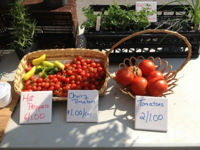 fresh produce at Maker's Market at Ann Marie Sculpture Garden & Art Center