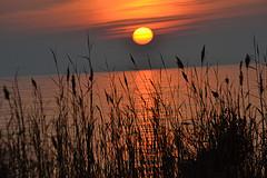 JefClarkArt sunset