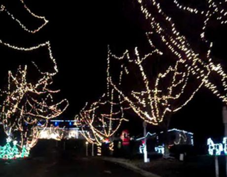 Light Display at Flat Iron Farm