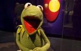 METCOM - Kermit - cropped - DonDeBold