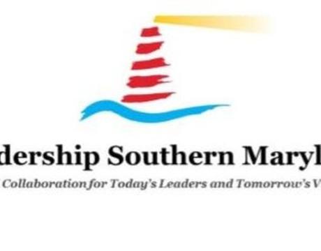 LSM horizontal logo