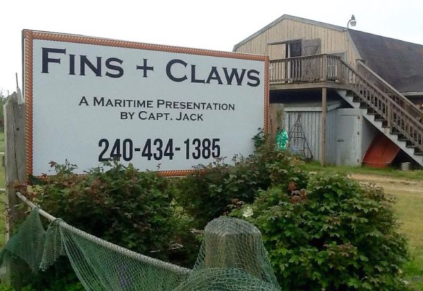Fins + Claws logo photo - NS