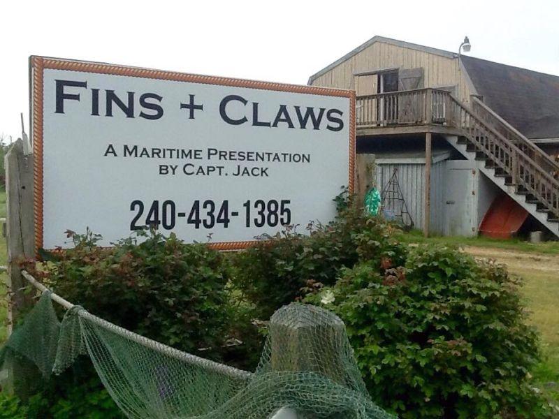 Fins + Claws logo photo - NS