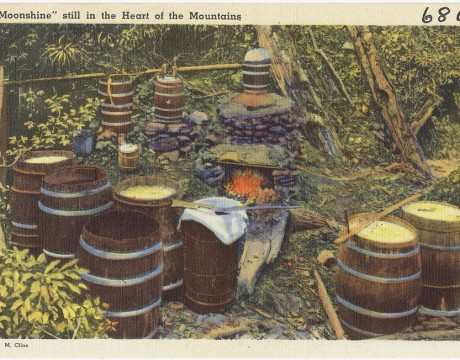 moonshine by W.M.Cline, Boston Library