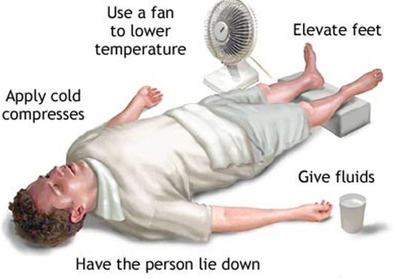 Summer Temps Can Cause Heat Stroke Lexleader