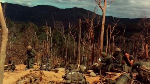 CSM - Vietnam - 12th_Inf,_4th_Inf_Div,_Vietnam_War_Hill_530