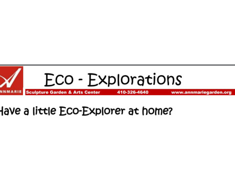 Kids Explore Nature at Annmarie Eco-Exploration