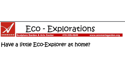 Eco-Exploration