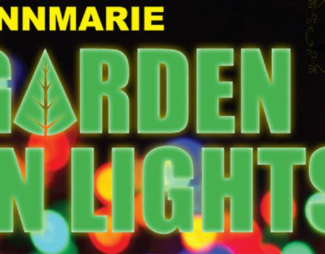 Garden In Lights Open to Pets