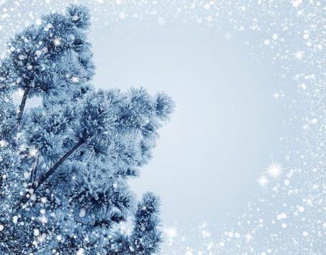 CSM Winter Break, Closings