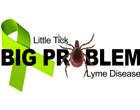 Tick-Borne Diseases