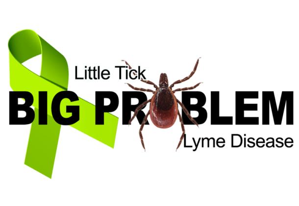 Tick-Borne Diseases
