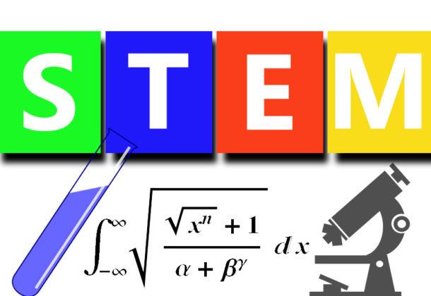 STEM Educators
